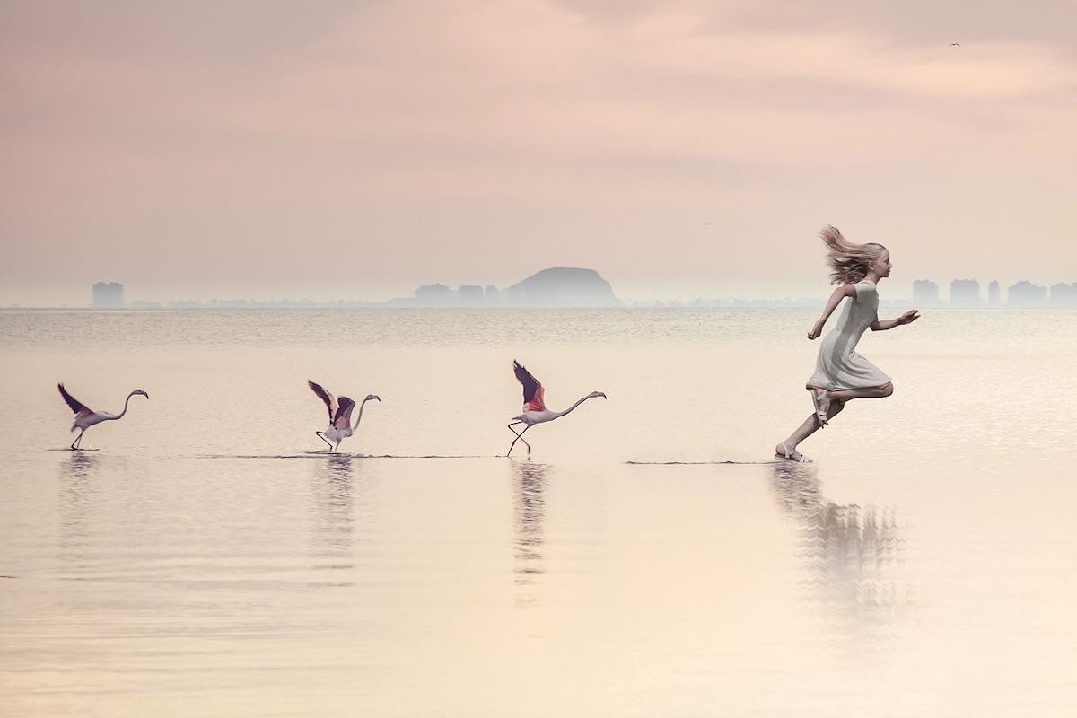 走る少女と鳥たち