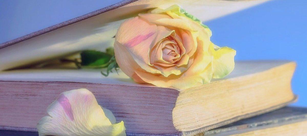 バラの挟まった本