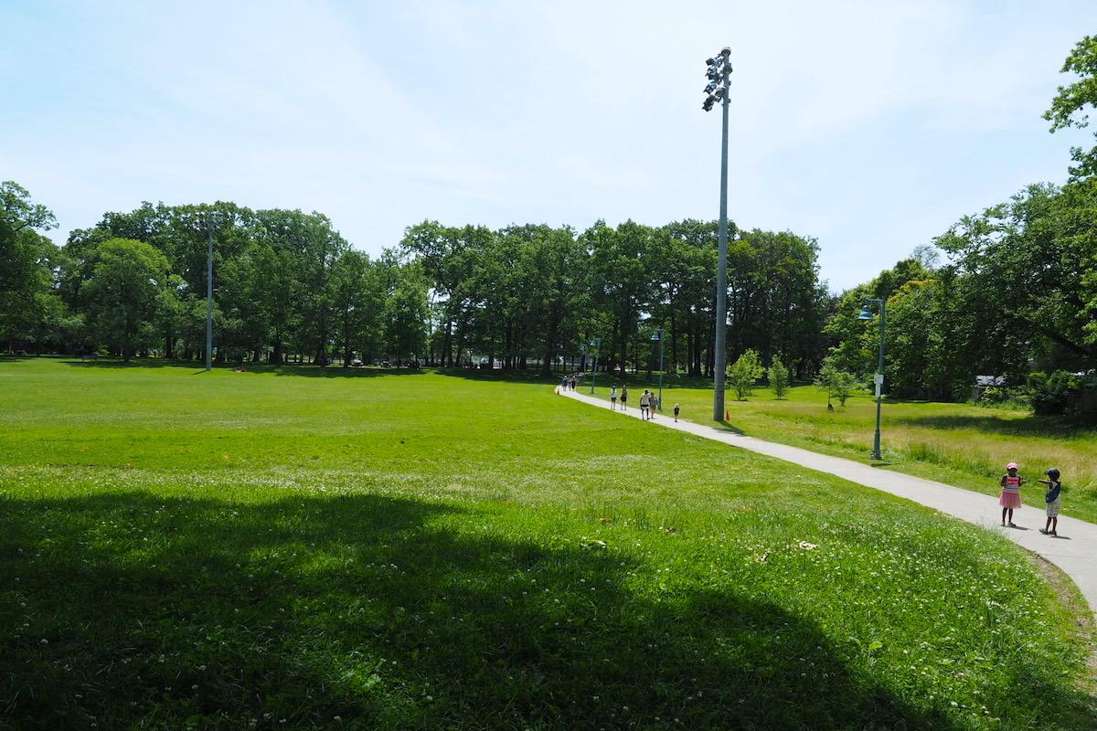 トロントのウッドバイン・ビーチ近くの茂み