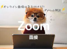 【体験談】オンライン面接は気を付けろ_!メリットデメリット解説。Zoom面接