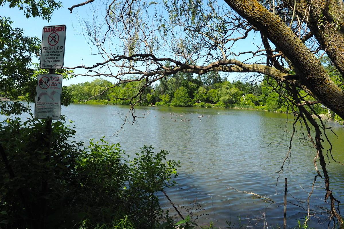 トロント郊外ユニオンビルのトゥーグッド池(Toogood Pond )
