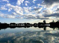 【トロントの大自然】 ハンバーベイ・パークの絶景に癒される